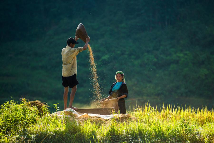 NORTH VIETNAM DISCOVERY