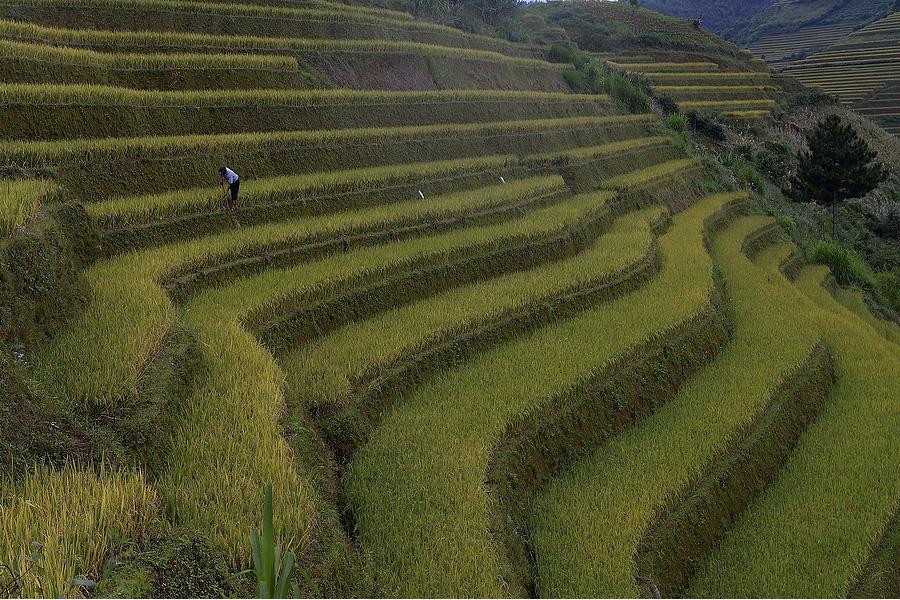 HIGHLIGHTS OF NORTH VIETNAM