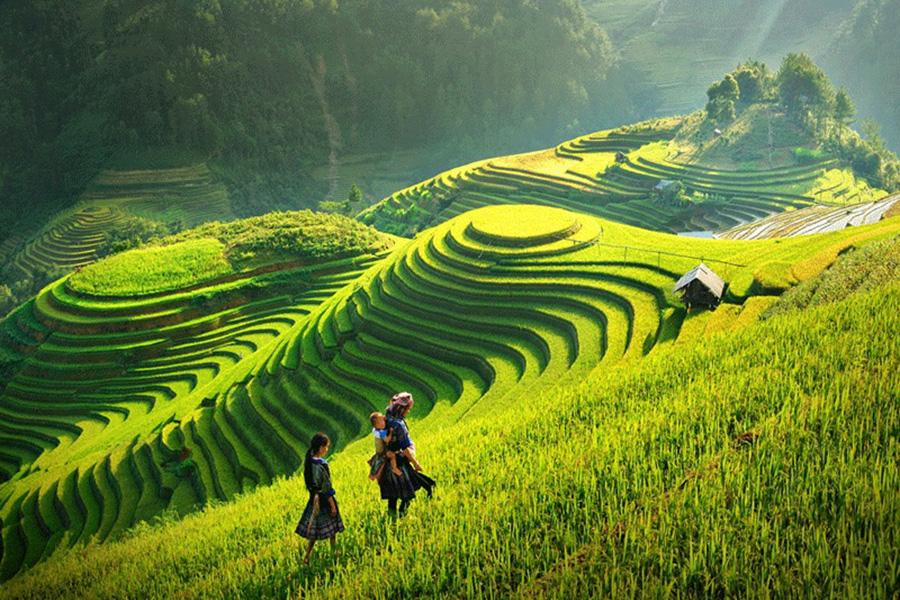 bac-ha-sunday-market-and-hill-tribes-of-sapa